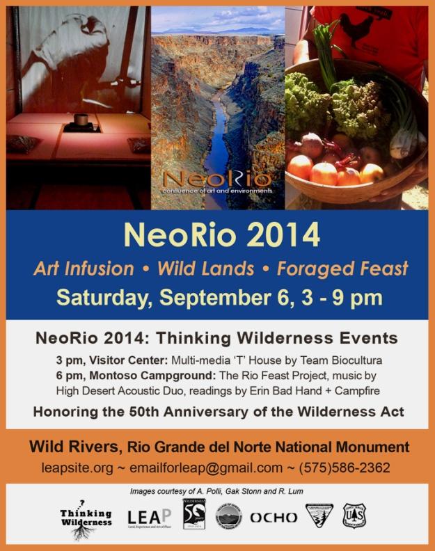 NeoRio2014ImageforWeb