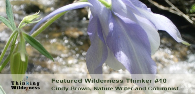 CindyBrownFeature2