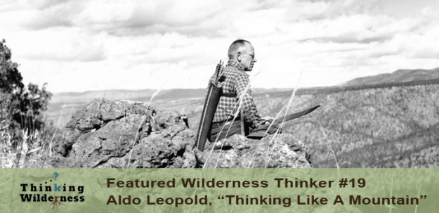 thinking like a mountain aldo leopold essay When initially published more than twenty years ago, thinking like a mountain was the first of a handful of efforts to capture the work and thought of america's most significant environmental thinker, aldo leopold.