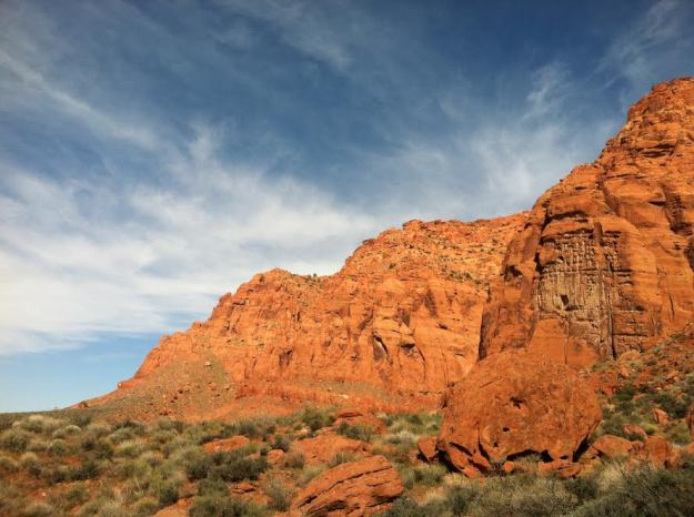 The Red Cliffs National Conservation Area of the Red Mountain Wilderness in Washington County, Utah. Image: Phil Hanceford, 2008