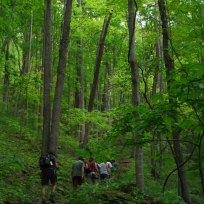 Hike at PMSS