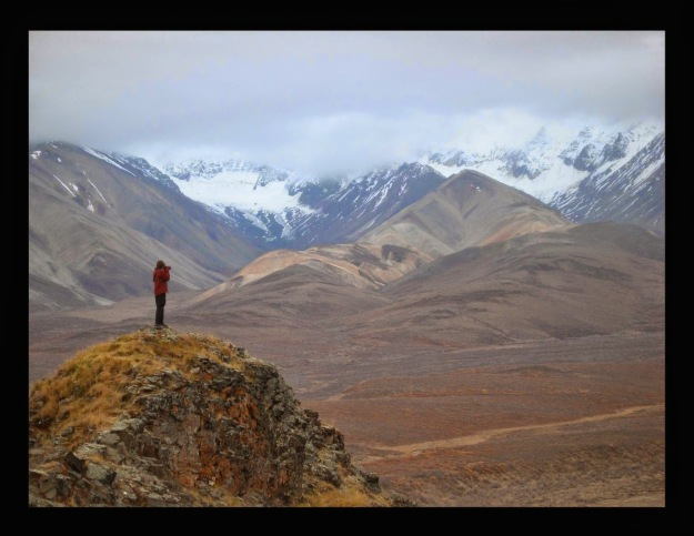 4. polychrome pass, denali national park. by marybeth holleman.
